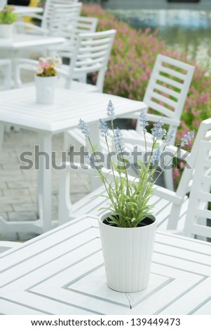 decorative flowers in vase on dinner table - stock photo