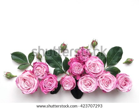 Decorative frame with pink bright roses on white background. Flat lay - stock photo