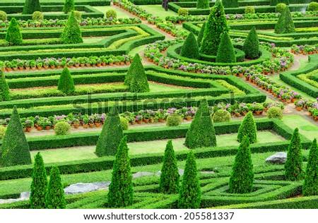 Decorative garden into shape. - stock photo