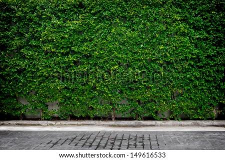Decorative garden on a brick floor - stock photo
