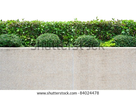 Decorative garden on a cobblestone wall isolated on white background - stock photo
