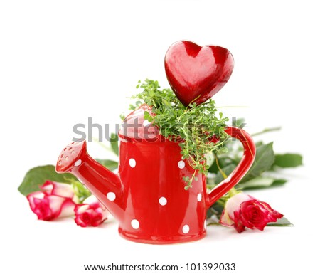 Decorative Heart  and  Watering Can - stock photo