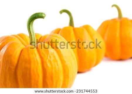 Decorative orange pumpkins, close-up shot with selective focus  - stock photo