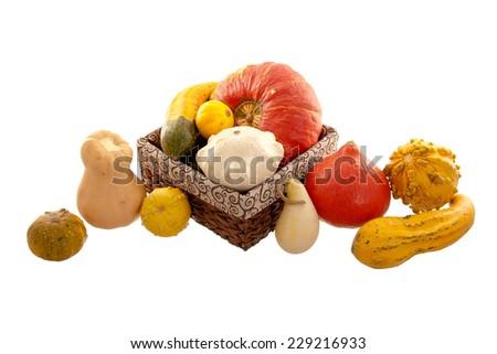 decorative pumpkins - stock photo