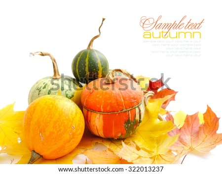 Decorative pumpkins and autumn leaves on a white background - stock photo