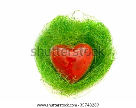 decorative red heart in green nest against the white background - stock photo