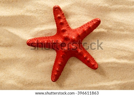 Decorative red sea star on sand background - stock photo