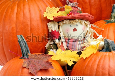 Decorative Scarecrow Surrounded By Pumpkins To Celebrate The Fall Thanksgiving Season - stock photo