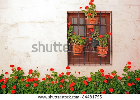 Decorative vintage window with colorful plants in pots. - stock photo