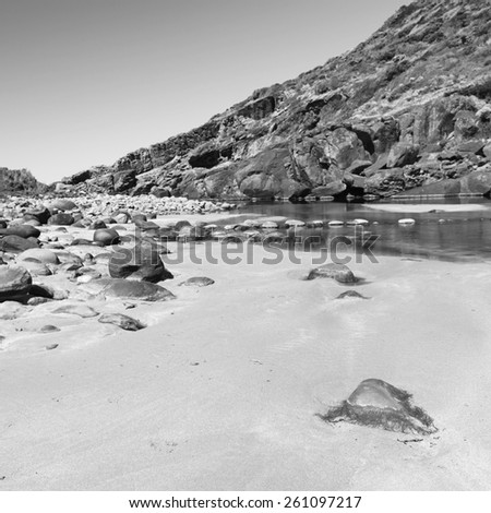 Deep Creek Conservation Park on the Fleurieu Peninsula in South Australia in black and white - stock photo