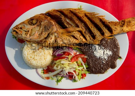 deep fried fish with rice, beans and salad in Mexican style on oval plate - stock photo