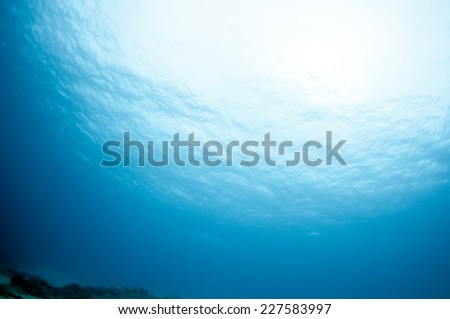 Deep in the sea _ Light and Sky, Palawan. - stock photo
