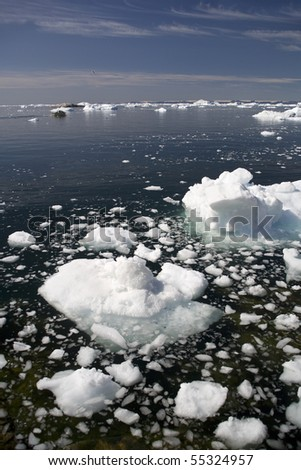 Deep pure waters, ices and icebergs of Greenland - stock photo