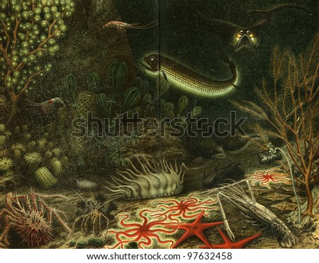 deep-sea fauna - an illustration of the encyclopedia publishers Education, St. Petersburg, Russian Empire, 1896 - stock photo