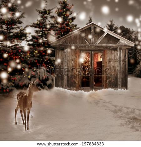 deer and Christmas scenery - stock photo