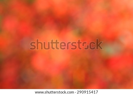 defocus of red flower use as background - stock photo