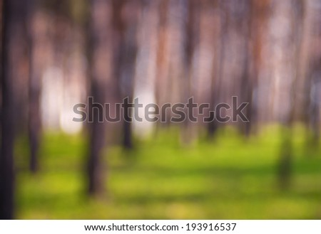 Defocused background of spring forest - stock photo