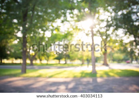 defocused bokeh background of garden with blossoming trees in sunny day, backdrop - stock photo