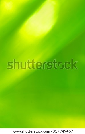 defocused green color  lights background - stock photo