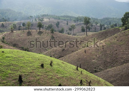 Deforestation on the mountain for agricultural at Tak province in Thailand. - stock photo