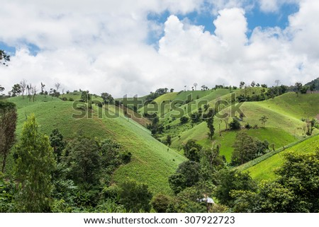 Deforestation on the mountain for agricultural at Tak province in Thailand,cornfield - stock photo