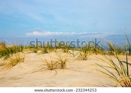 Delaware seashore sand dunes along the Atlantic ocean. - stock photo