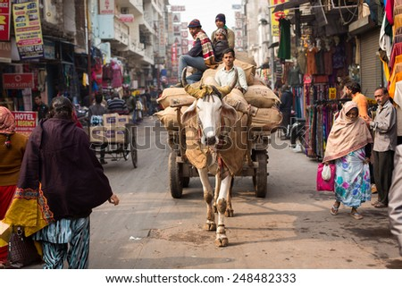 DELHI, INDIA - DEC 31: The cow carries a cart on the streets in Delhi on Dec 31, 2014. Delhi it has a population of about 11 million and a metropolitan population of about 16.3 million - stock photo