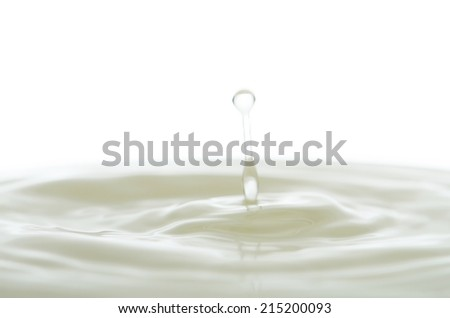 delicate Milk Splash  - stock photo