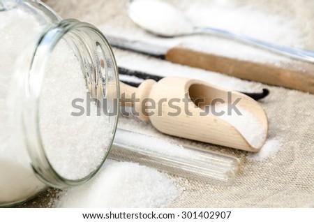 delicious aromatic vanilla with white sugar - stock photo