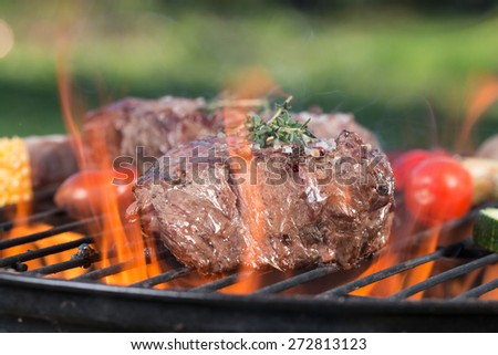 Delicious beef steak on garden grill, close-up - stock photo