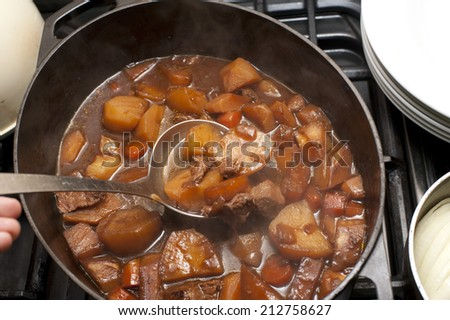 Delicious beef stew with carrots and potatoes in a rich gravy in a pot with a ladle for serving - stock photo