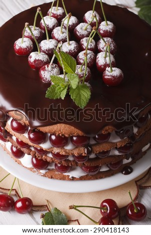 Delicious cake with fresh cherries and chocolate on the plate closeup. vertical, selective focus  - stock photo