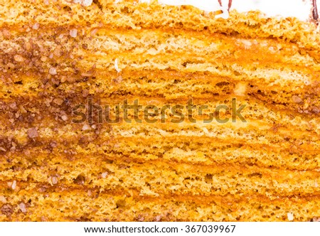 Delicious cake with grated chocolate and walnuts. Macro. Photo can be used as a whole background. - stock photo