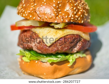 Delicious cheeseburger stacked high with a juicy beef patty, standing on a white paper - stock photo