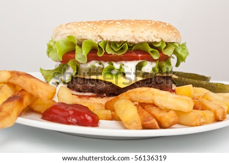 delicious cheeseburger with french fries - stock photo