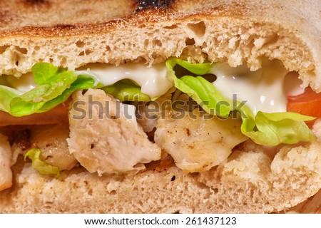 Delicious chicken gyros macro - stock photo