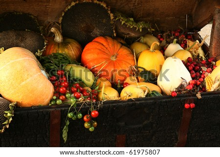 Delicious, colorful variety of fresh autumn vegetables - stock photo