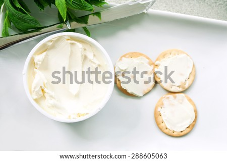 Delicious cream cheese crackers appetizer with mint on a white plate - stock photo