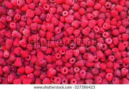 Delicious first class fresh raspberries isolated on white - stock photo