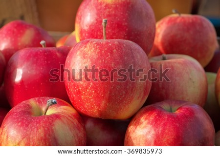 Delicious fresh juicy apples in local fruit market