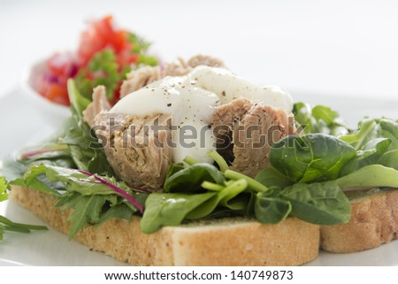 Delicious freshly prepared open tuna salad sandwich with mayo, tomato and spanish onions. - stock photo
