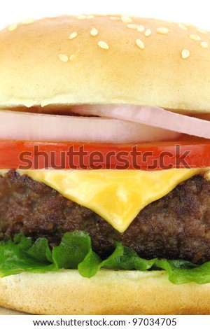 Delicious grilled burger on wheat buns - stock photo