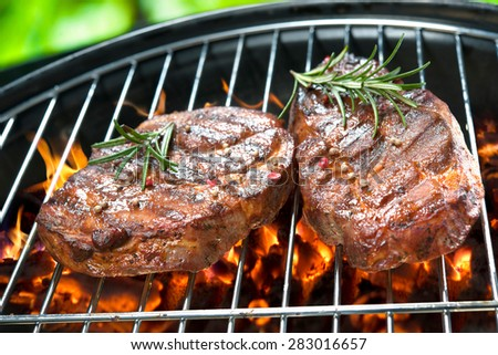 Delicious grilled meat with vegetable over the coals on a barbecue - stock photo
