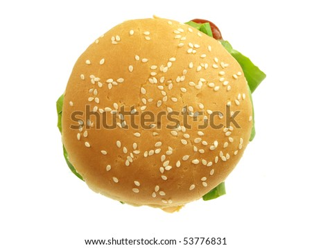 Delicious hamburger isolated on white background - stock photo