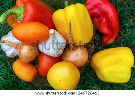 Delicious home-grown vegetables on green grass background. Top view. Shallow depth of field. - stock photo