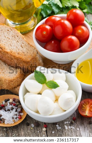delicious mozzarella and ingredients for a salad, vertical - stock photo