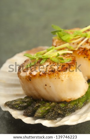 Delicious pan seared sea scallop with asparagus and pea shoots served on a scallop shell - stock photo
