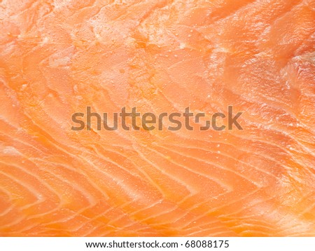 Delicious salmon fillet closeup - stock photo