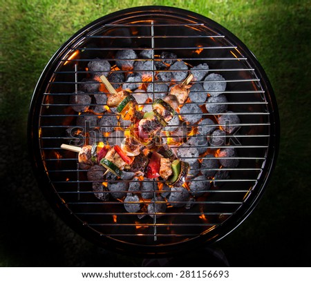 Delicious skewers on garden grill, barbecue time. - stock photo
