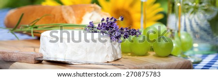 Delicious summer lunch in the garden - stock photo